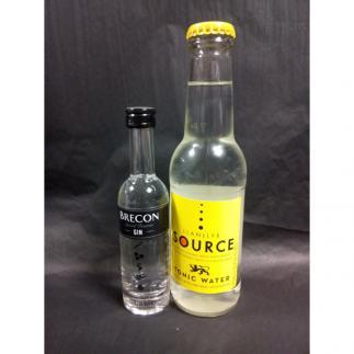 100% Welsh Gin and Tonic Mini - Penderyn Brecon Gin